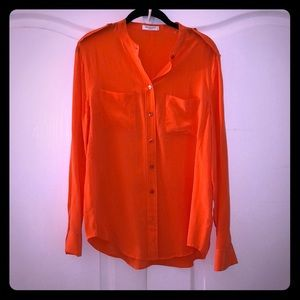 Long sleeved button down blouse